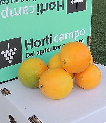 Naranjas  de Mesa(LP) en Sevilla