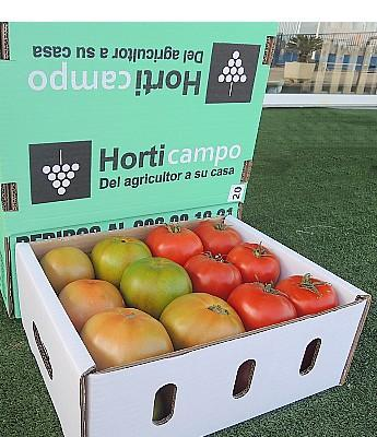 20 - Stdo. de Tomate de Los Palacios en Sevilla