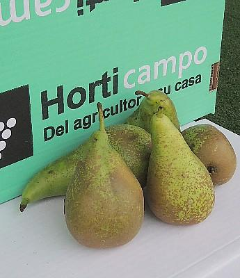 Frutas en Sevilla