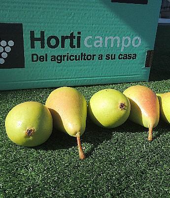 Hortalizas en Sevilla