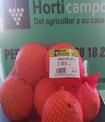 Naranjas de Mesa en Sevilla