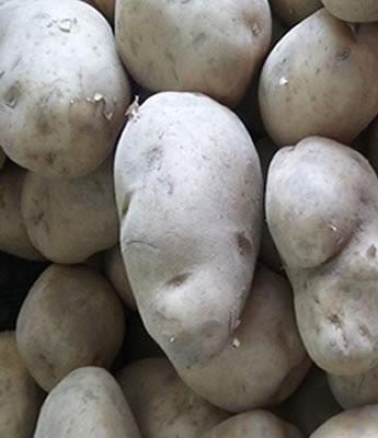 Patata para Freir  en Sevilla